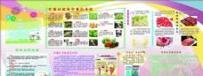 食品药品安全宣传栏