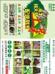 天然土菜宣传单
