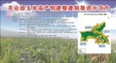玉米高产示范