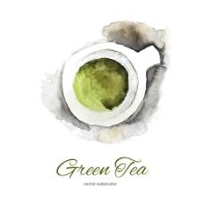 水彩绘清新绿茶插画