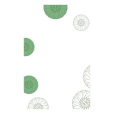 手绘花朵几何元素