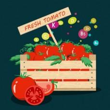 健康蔬菜维生素矢量背景