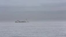 海上实拍视频素材