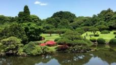 湖边风景视频设计