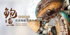小鲍鱼网页banner