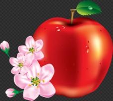 漂亮苹果和花图片免抠png透明图层素材