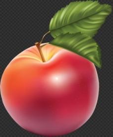 漂亮真实苹果图片免抠png透明图层素材