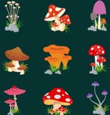 各种蘑菇矢量元素