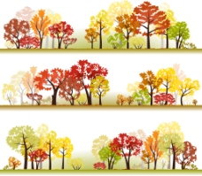 秋天的大树插画