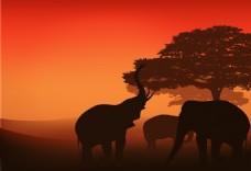 落日下的大象插画