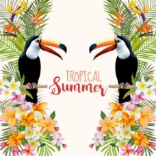 夏天对称海报鹦鹉花卉纹理背景矢量