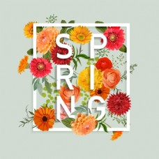 春天雏菊春夏花卉海报矢量