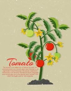 番茄树图标广告免费矢量
