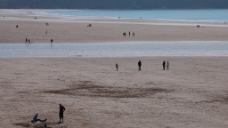实拍沙滩视频素材设计
