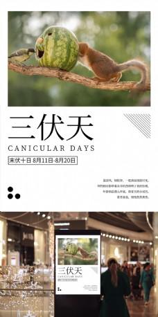 简约清新农历传统三伏天微信配图海报