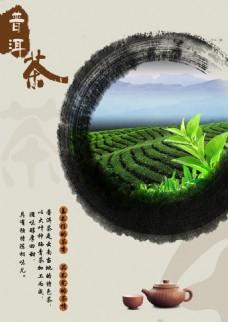 普洱茶商业海报