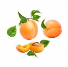 杏子png元素