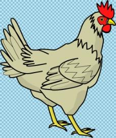 手绘风格母鸡图片免抠png透明图层素材