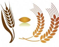 稻米稻穗素材