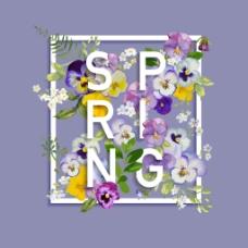 紫色蝴蝶兰春夏花卉海报矢量