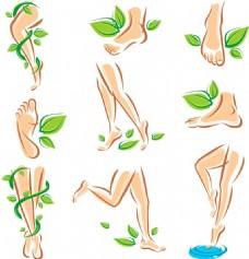 人物脚部和绿叶插画