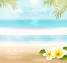 夏天大海的风景插画