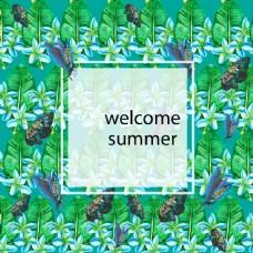 夏天背景素材