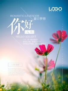 清新唯美你好八月微博配图海报设计