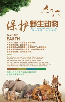 珍爱动物就是爱护生命海报