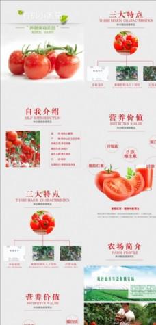 小番茄详情页 圣女果