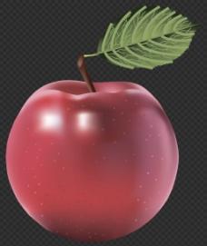 手绘逼真红苹果图片免抠png透明图层素材