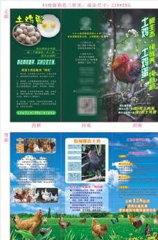土鸡宣传单(可编辑)