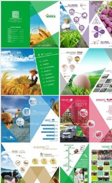 农业公司企业画册