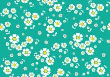 小清新雏菊花朵背景素材