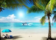 海滩帆船海鸥铁树蓝色背景
