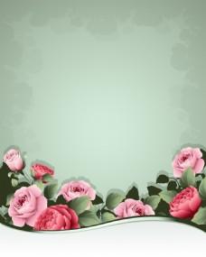 复古玫瑰花植物背景