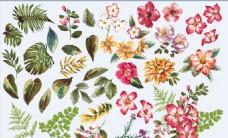 爱情婚庆类精致手绘鲜花海报