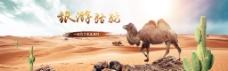 骆驼旅游宣传banner设计