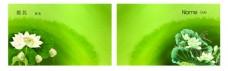 简洁创意绿色名片