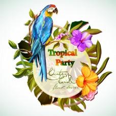 美丽的鹦鹉和花朵插画