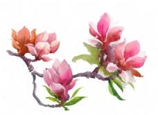 卡通花枝花朵水彩手绘矢量文件