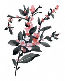 水墨黑色植物花朵水彩手绘矢量文件