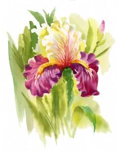 紫色意境花朵水彩手绘矢量文件