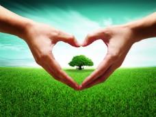 保护树林绿色背景