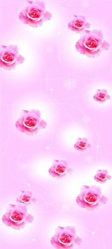 粉玫瑰花朵粉色背景