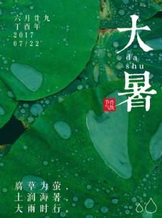 绿色简约中国传统大暑节气海报