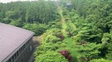 森林城堡风景视频
