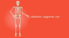 人物骨架的视频展示