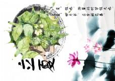 中国风立夏水墨荷花海报