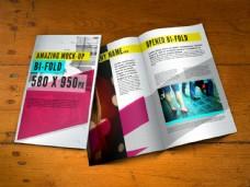 宣传画册小册子贴图样机